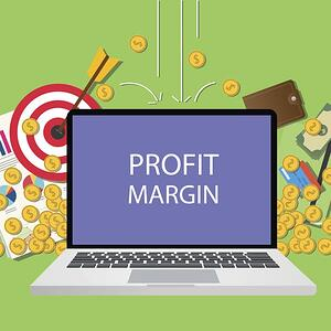 Profit Margin on a Computer Screen